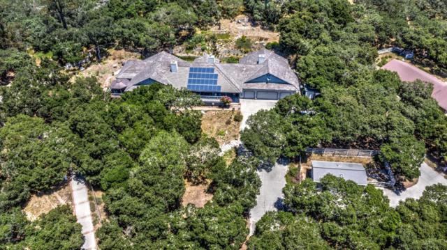 20063 Audrey Lane, Salinas, CA 93907 (MLS #19044388) :: REMAX Executive