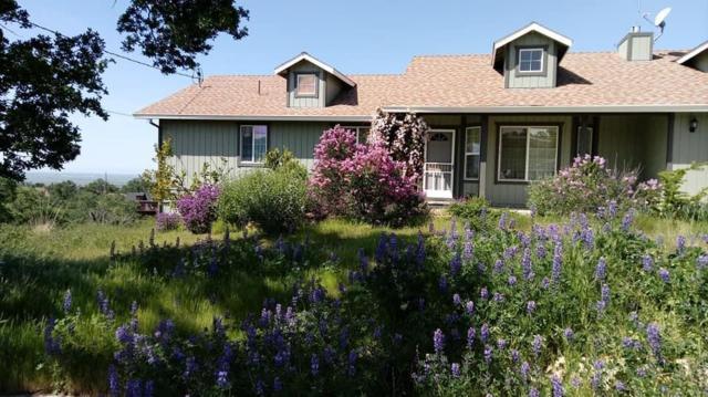 9815 Alamo Drive, La Grange Unincorp, CA 95329 (MLS #19044421) :: The MacDonald Group at PMZ Real Estate