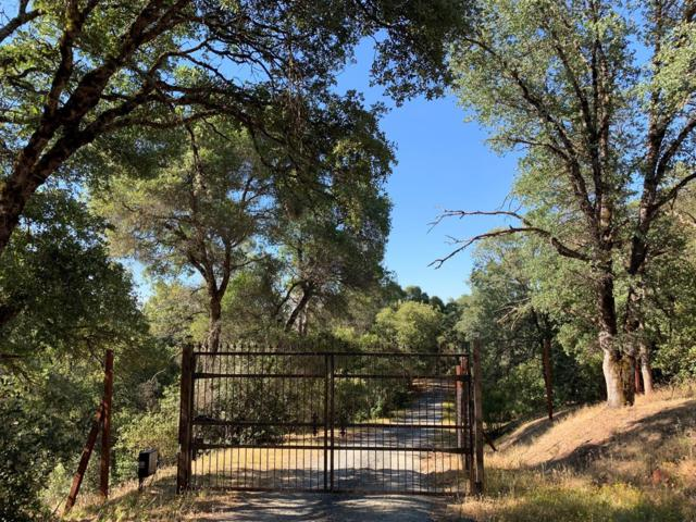 1820 Red Fox Road, Placerville, CA 95667 (MLS #19044546) :: The MacDonald Group at PMZ Real Estate
