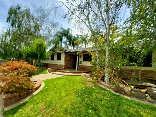 3113 Jeanette Drive, Modesto, CA 95350 (MLS #19044612) :: The Del Real Group