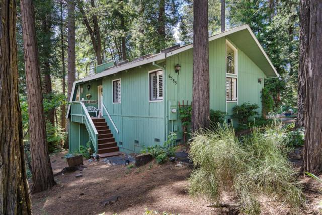 6585 Onyx Trail, Pollock Pines, CA 95726 (MLS #19044625) :: The Del Real Group