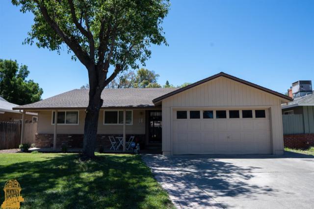 18 Clanton Avenue, Woodland, CA 95695 (MLS #19044675) :: Dominic Brandon and Team