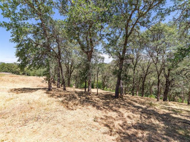 4251 Hensley Circle, El Dorado Hills, CA 95762 (MLS #19044850) :: The Del Real Group