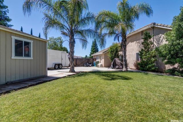 8050 Blue Oak Ct Court, Sutter, CA 95982 (MLS #19044914) :: Heidi Phong Real Estate Team