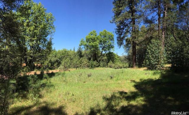 0 Tabeau Road, Pine Grove, CA 95665 (MLS #19045483) :: Dominic Brandon and Team