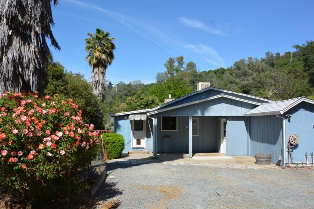 19539 Rawhide Rd, Sonora, CA 95370 (MLS #19046005) :: REMAX Executive