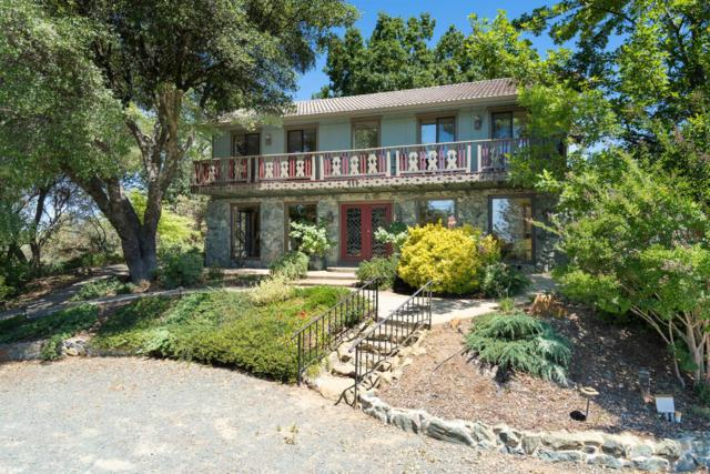23005 Upton Road, Plymouth, CA 95669 (MLS #19046281) :: The MacDonald Group at PMZ Real Estate