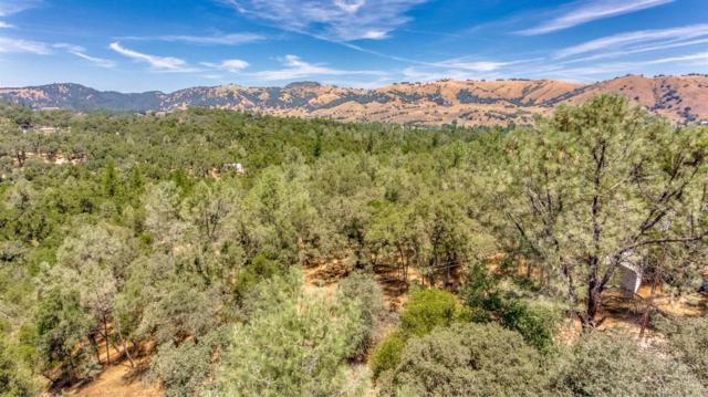 5998 Clark Mountain Road, Lotus, CA 95651 (MLS #19046526) :: The MacDonald Group at PMZ Real Estate