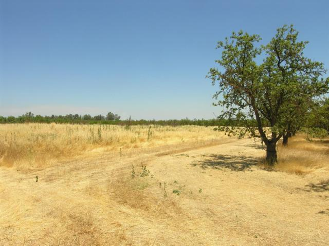 0 R1w Por Sec 9, Dunnigan, CA 95937 (MLS #19046635) :: Heidi Phong Real Estate Team