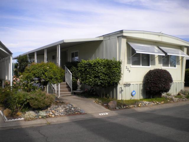 229 Madera, Lodi, CA 95240 (MLS #19046697) :: REMAX Executive