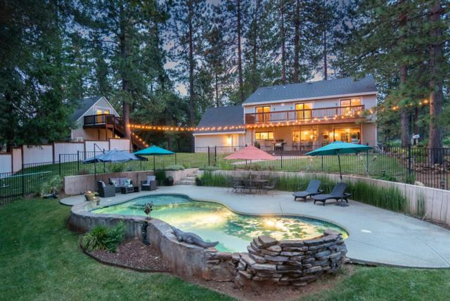 17476 Fiddletown Road, Fiddletown, CA 95629 (MLS #19046736) :: REMAX Executive