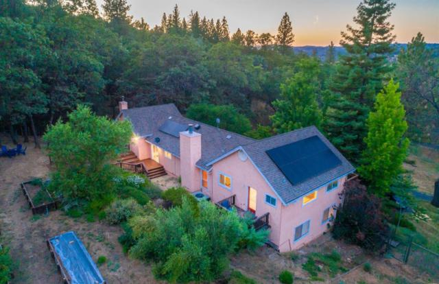 9020 Riverwood Drive, Placerville, CA 95667 (MLS #19047171) :: The MacDonald Group at PMZ Real Estate
