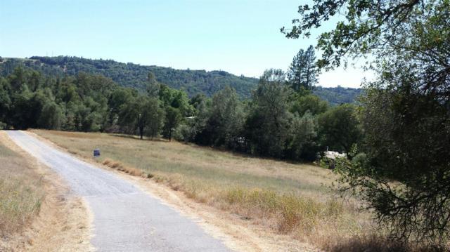0-026 Paso Diablo Road, Placerville, CA 95667 (MLS #19047250) :: Keller Williams - Rachel Adams Group