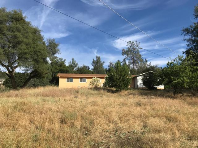 43274 Seminole Court, Coarsegold, CA 93614 (MLS #19047463) :: REMAX Executive