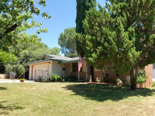 12400 New Airport Road, Auburn, CA 95603 (MLS #19047475) :: REMAX Executive