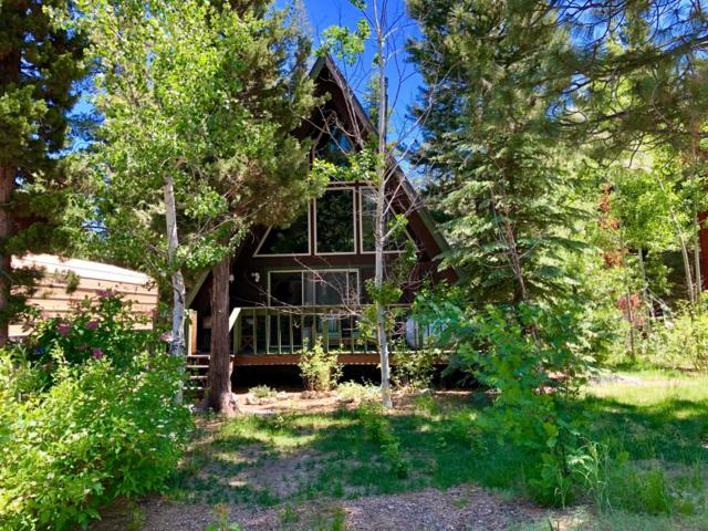 2663 S Upper Truckee Road, South Lake Tahoe, CA 96150 (MLS #19047491) :: REMAX Executive