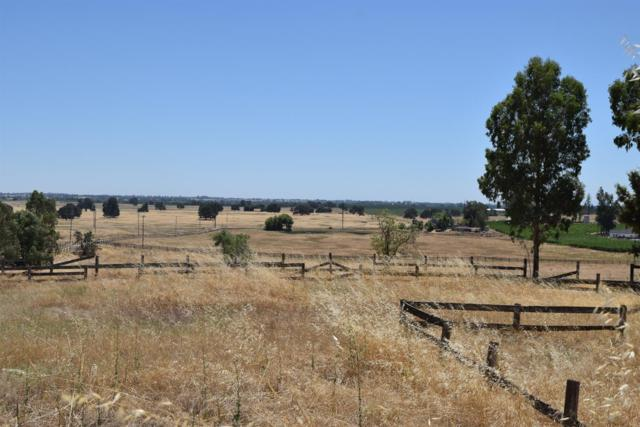 19721 E Liberty Road, Clements, CA 95227 (MLS #19047717) :: eXp Realty - Tom Daves
