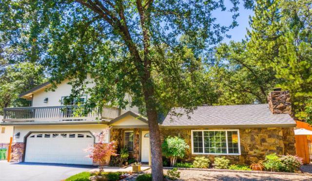 20608 Resort Road, Sonora, CA 95370 (MLS #19047804) :: Heidi Phong Real Estate Team