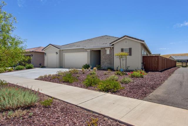 7030 De La Vina Drive, El Dorado Hills, CA 95762 (MLS #19047858) :: eXp Realty - Tom Daves