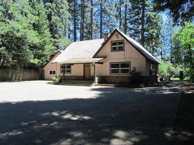 5730 Pony Express Trail, Pollock Pines, CA 95726 (MLS #19048100) :: REMAX Executive