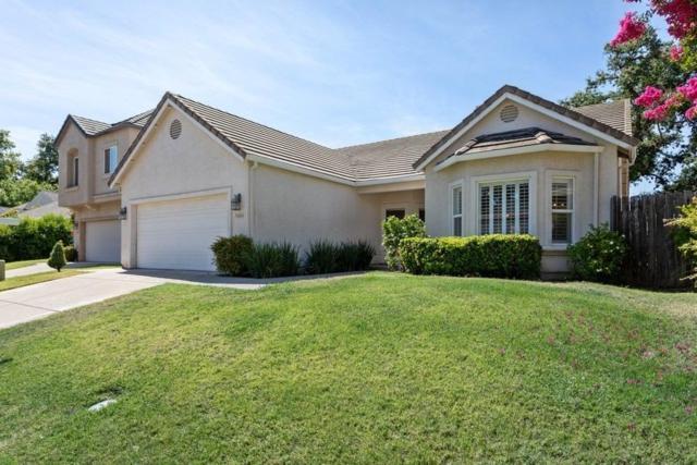 5406 Yellow Pine Way, Sacramento, CA 95841 (MLS #19048263) :: Heidi Phong Real Estate Team