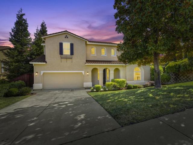 3180 Black Oak Drive, Rocklin, CA 95765 (MLS #19048444) :: REMAX Executive