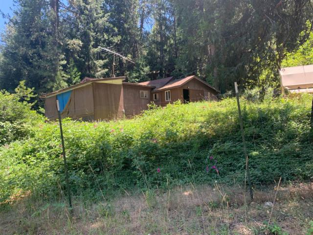 111 Sylvan Road, Colfax, CA 95713 (MLS #19048518) :: Dominic Brandon and Team