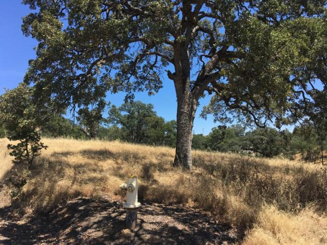 0 Gusanillo Court, Coulterville, CA 95311 (MLS #19048560) :: The MacDonald Group at PMZ Real Estate