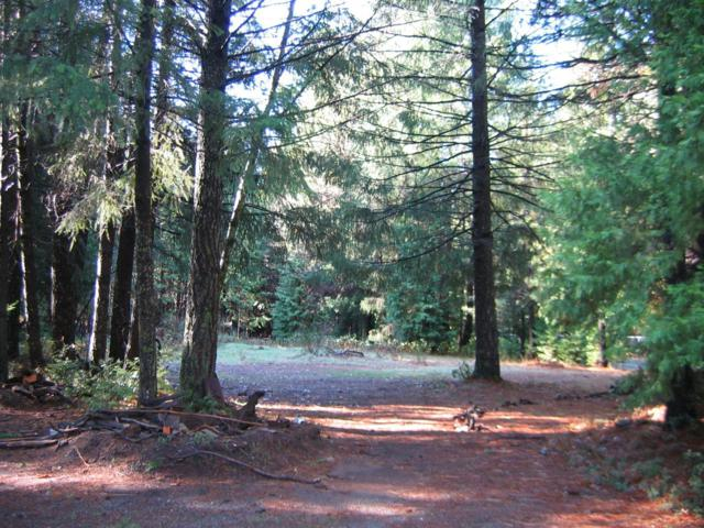 2-Acres Wentworth Springs Road, Georgetown, CA 95634 (MLS #19048661) :: The MacDonald Group at PMZ Real Estate