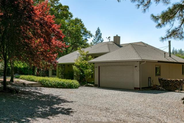 4340 Sierra Springs Drive, Pollock Pines, CA 95726 (MLS #19048675) :: REMAX Executive