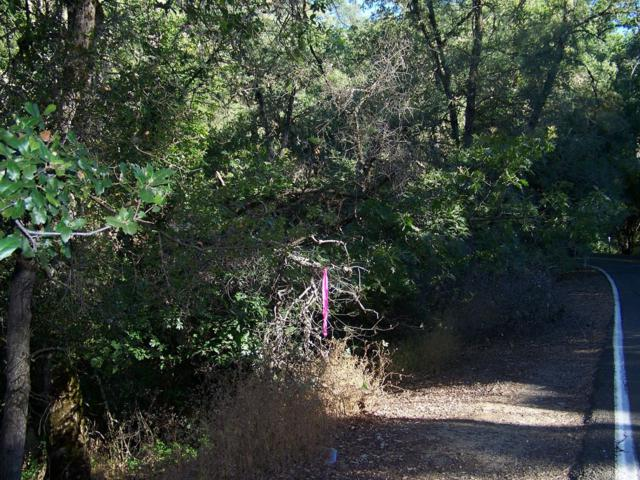 1-AC Forni Road, Placerville, CA 95667 (MLS #19048836) :: The MacDonald Group at PMZ Real Estate