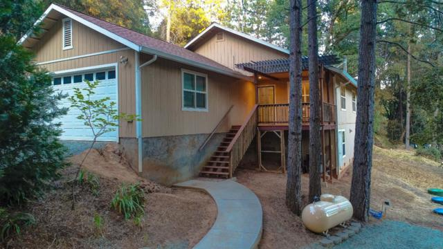 2651 Bald Mountain Road, West Point, CA 95255 (MLS #19048966) :: Dominic Brandon and Team