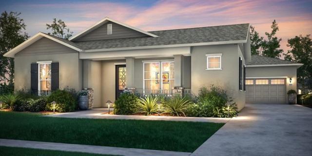 828 River Pointe Circle, Oakdale, CA 95361 (MLS #19048977) :: Heidi Phong Real Estate Team