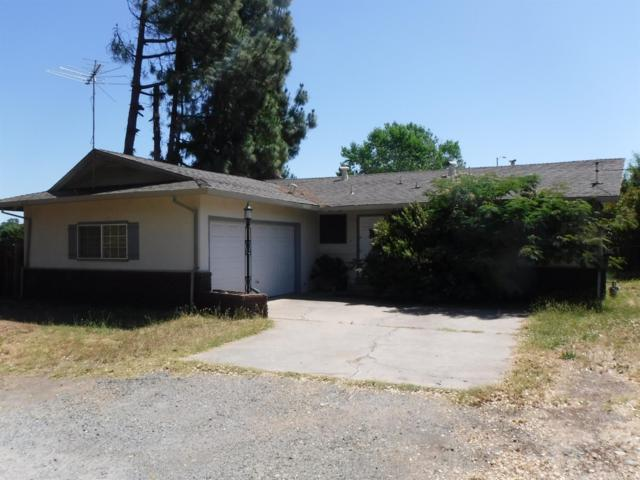 5125 Ward Lane, Rocklin, CA 95677 (MLS #19049059) :: REMAX Executive