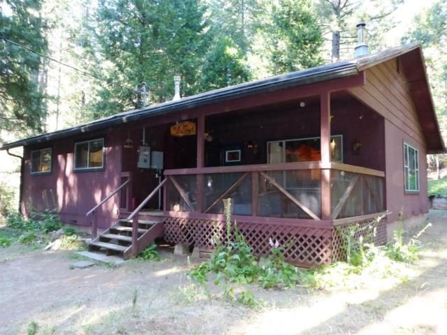 6906 Tyler Drive, Grizzly Flats, CA 95636 (MLS #19049171) :: Keller Williams - Rachel Adams Group
