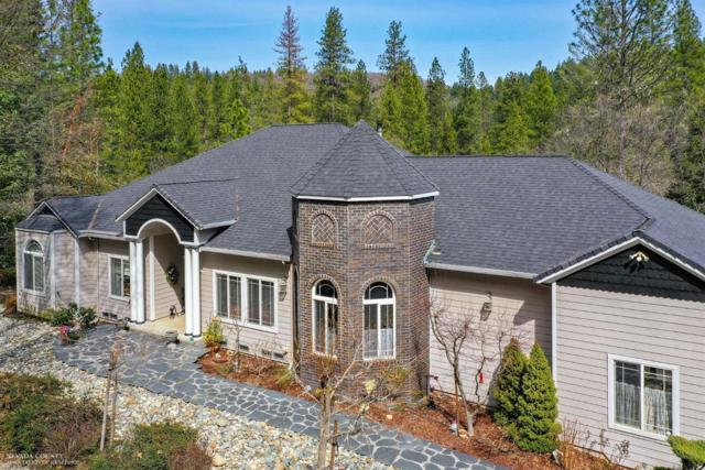 13272 Lower Anchor Lane, Grass Valley, CA 95945 (MLS #19049204) :: REMAX Executive