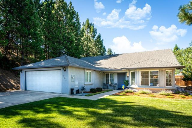 307 Terrace View Circle, Jackson, CA 95642 (MLS #19049233) :: REMAX Executive