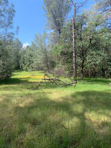 9040 Orval Beckett, Placerville, CA 95667 (MLS #19049255) :: The MacDonald Group at PMZ Real Estate