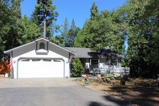 6039 Dolly Varden Lane, Pollock Pines, CA 95726 (MLS #19049298) :: REMAX Executive