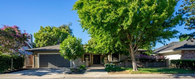 928 Sylvan Meadows Drive, Modesto, CA 95356 (MLS #19049315) :: Heidi Phong Real Estate Team