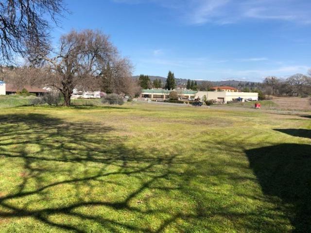 2545 Greenwood Lane, Cameron Park, CA 95682 (MLS #19049336) :: The MacDonald Group at PMZ Real Estate