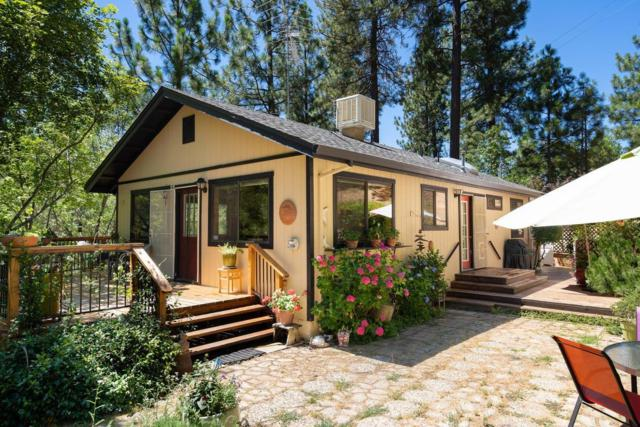 7879 Texas Canyon Road, Placerville, CA 95667 (MLS #19049422) :: Dominic Brandon and Team