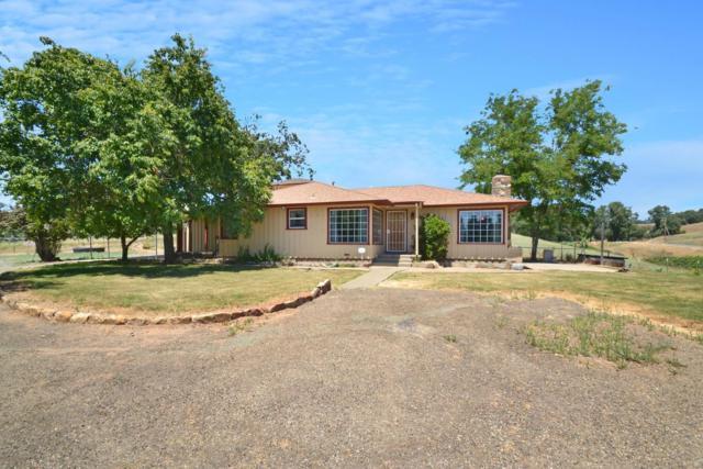 257 New York Ranch Road, Jackson, CA 95642 (MLS #19049508) :: Heidi Phong Real Estate Team