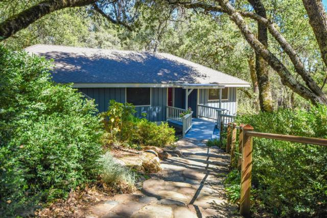 5145 Hanks Exchange Road, Placerville, CA 95667 (MLS #19049535) :: The MacDonald Group at PMZ Real Estate