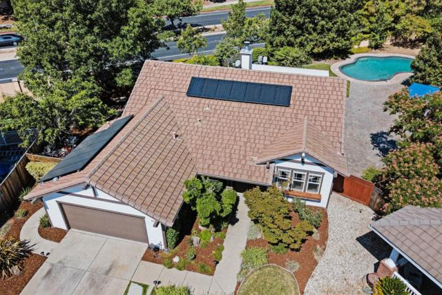 2313 Antler Court, Antioch, CA 94531 (MLS #19049577) :: REMAX Executive