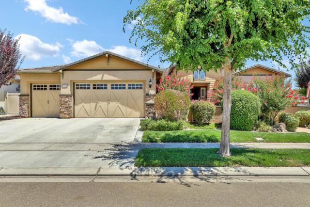 2438 Millpond Way, Manteca, CA 95336 (MLS #19049594) :: Heidi Phong Real Estate Team