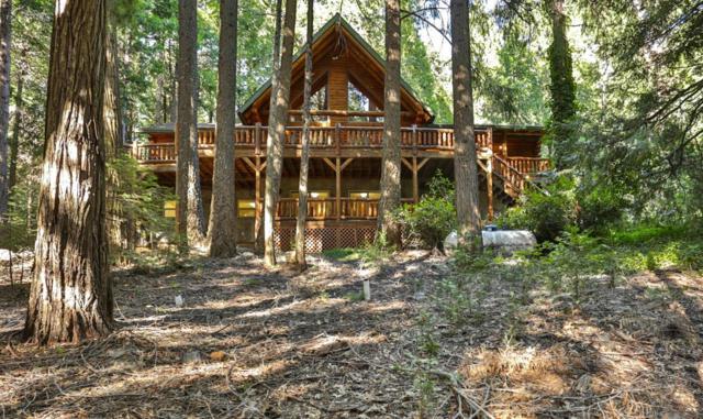 2900-2900 Amber Trail, Pollock Pines, CA 95726 (MLS #19049645) :: REMAX Executive