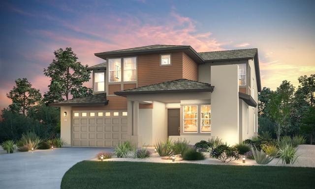 3065 Adelaide Loop, Roseville, CA 95747 (MLS #19049668) :: Heidi Phong Real Estate Team