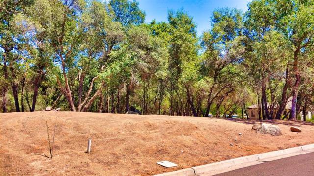 3305 W Cherokee Trail, Loomis, CA 95650 (MLS #19049703) :: The MacDonald Group at PMZ Real Estate