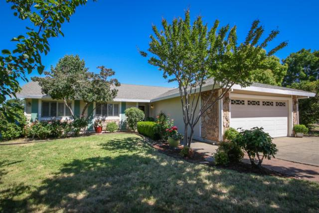 4130 Paige Court, Rocklin, CA 95677 (MLS #19049738) :: eXp Realty - Tom Daves
